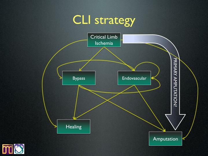 CLI strategy