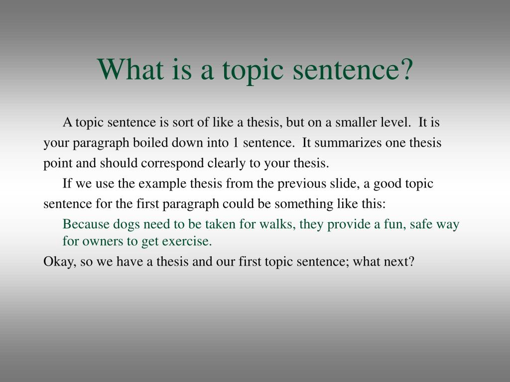 What is a topic sentence?