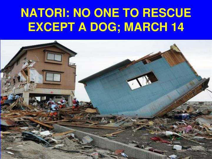 NATORI: NO ONE TO RESCUE EXCEPT A DOG; MARCH 14