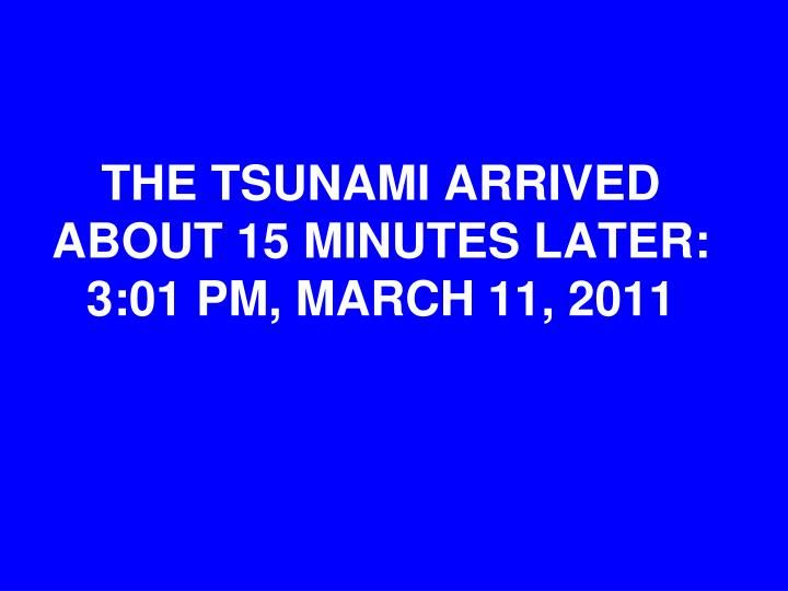 THE TSUNAMI ARRIVED ABOUT 15 MINUTES LATER:  3:01 PM, MARCH 11, 2011