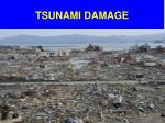 tsunami damage1