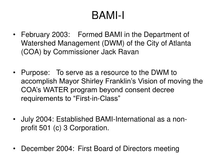 BAMI-I