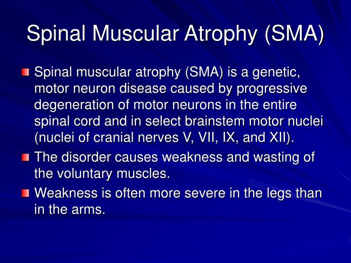 Ppt sma powerpoint presentation id 1366079 for Motor neurone disease causes