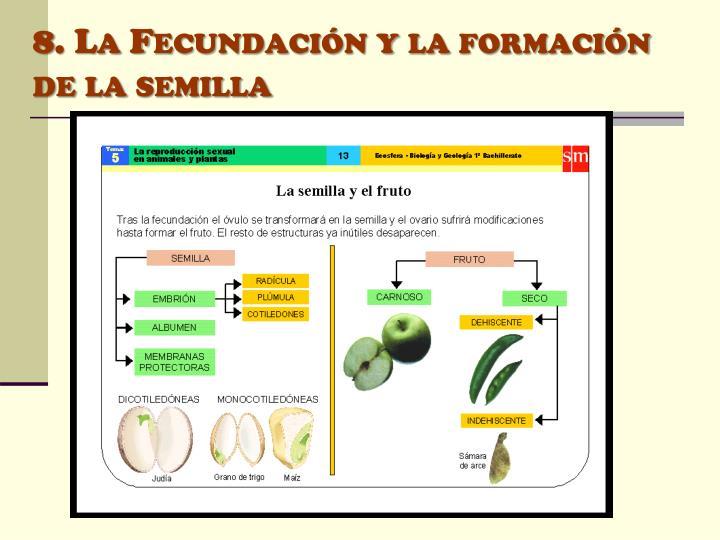 8. La Fecundación y la formación de la semilla