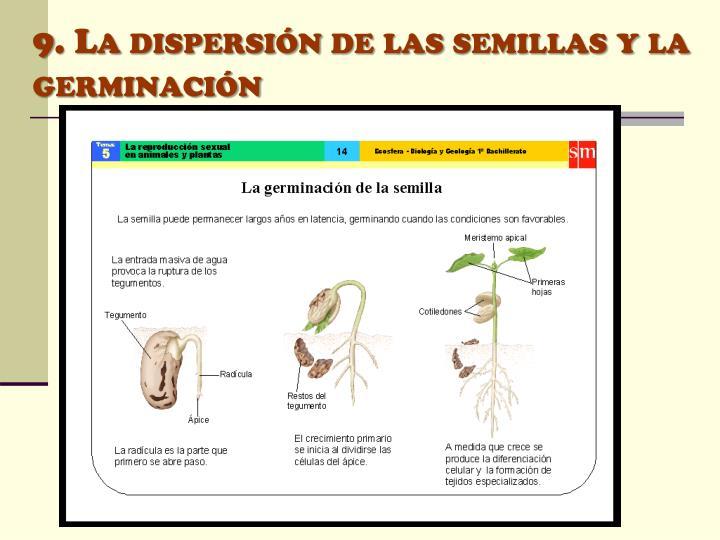 9. La dispersión de las semillas y la germinación