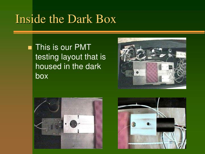 Inside the Dark Box