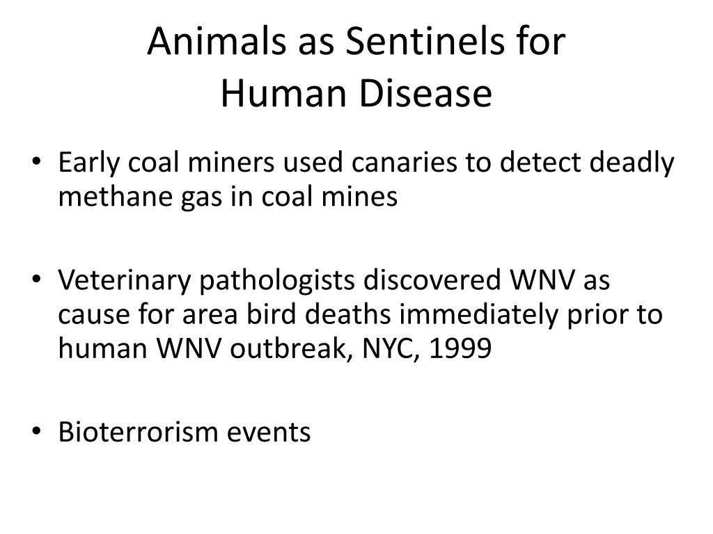 Animals as Sentinels for
