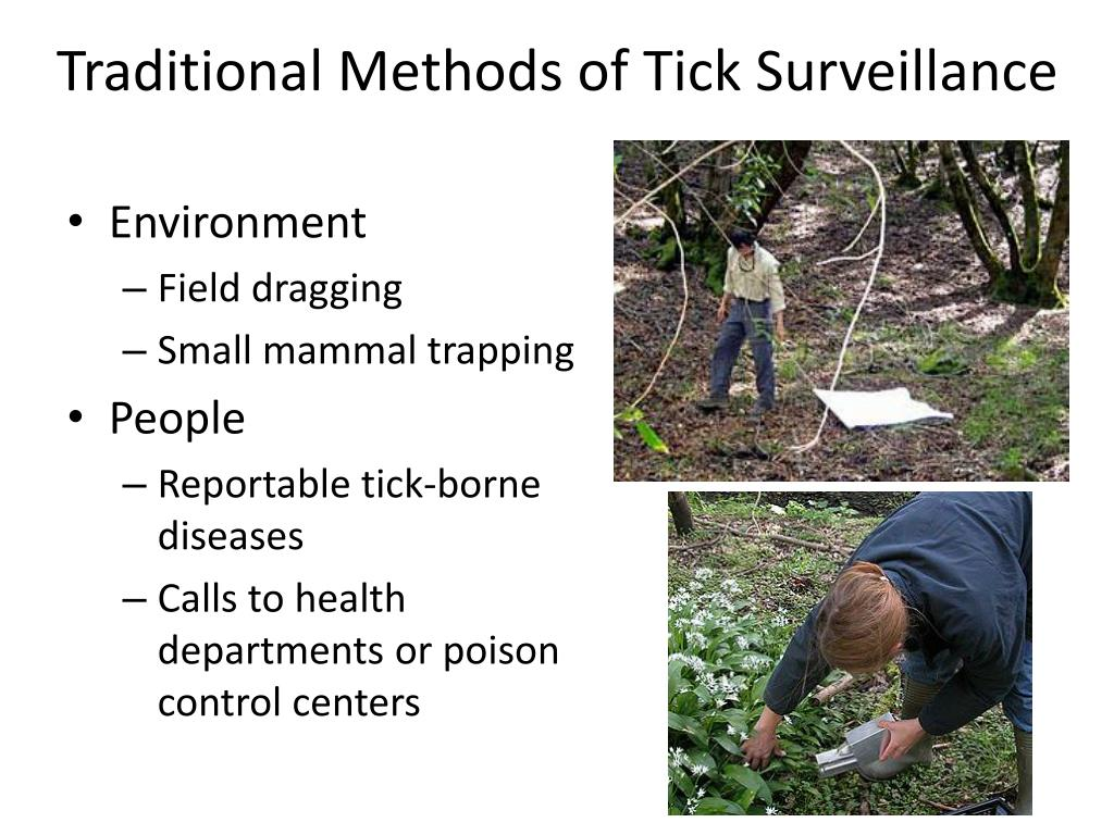 Traditional Methods of Tick Surveillance