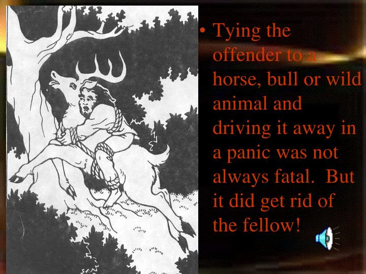 Tying the offender to a horse, bull or wild animal and driving it away in a panic was not always fatal.  But it did get rid of the fellow!