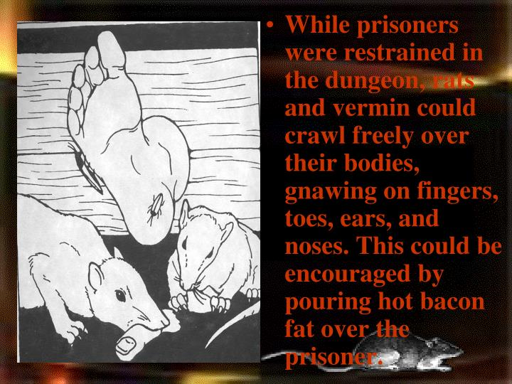While prisoners were restrained in the dungeon, rats and vermin could crawl freely over their bodies, gnawing on fingers, toes, ears, and noses. This could be encouraged by pouring hot bacon fat over the prisoner.