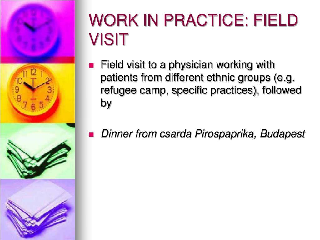 WORK IN PRACTICE: FIELD VISIT