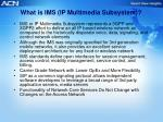 what is ims ip multimedia subsystem
