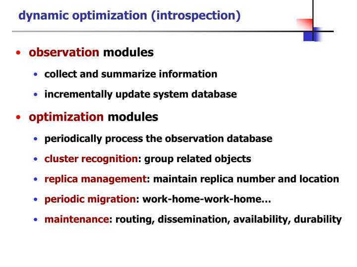 dynamic optimization (introspection)