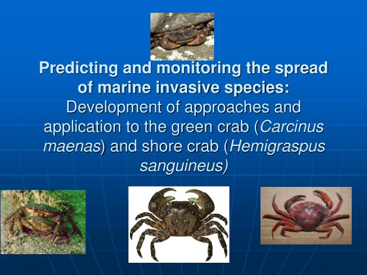 Predicting and monitoring the spread of marine invasive species: