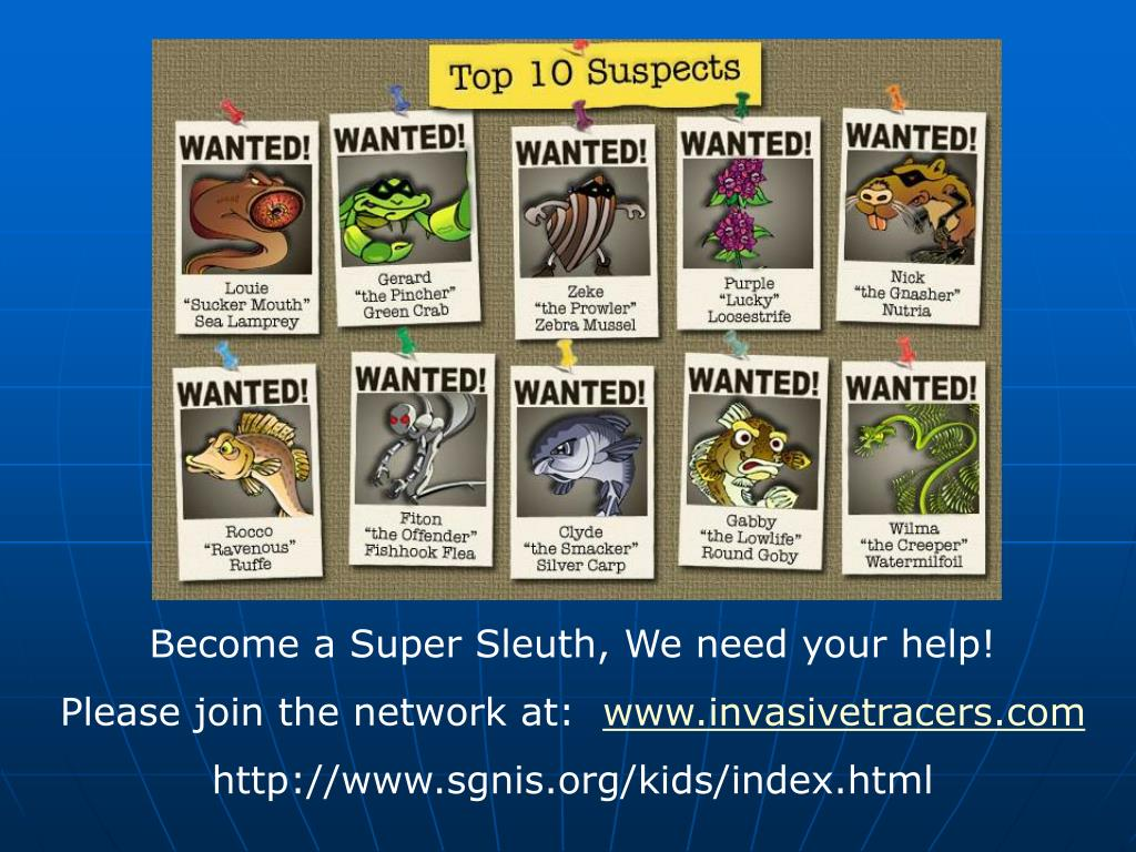Become a Super Sleuth, We need your help!