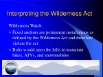 interpreting the wilderness act1