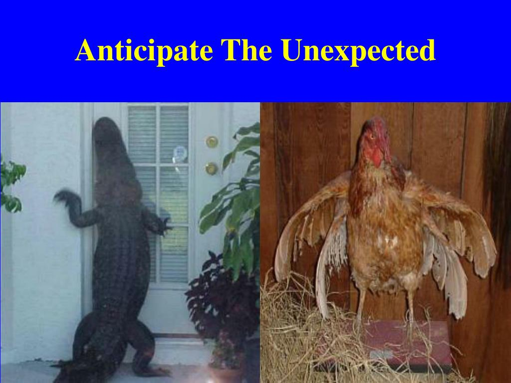 Anticipate The Unexpected