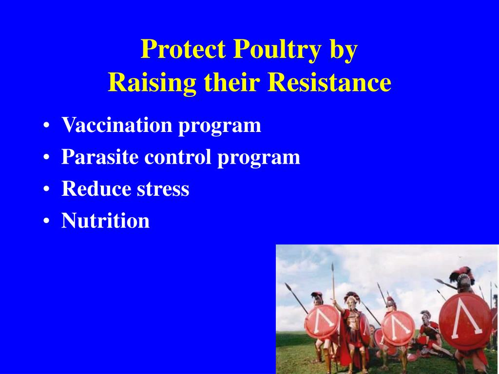 Protect Poultry by