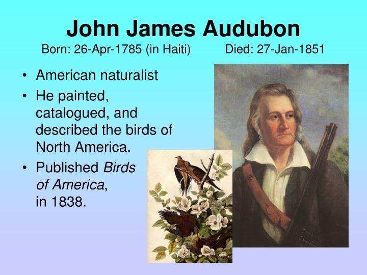 American naturalist