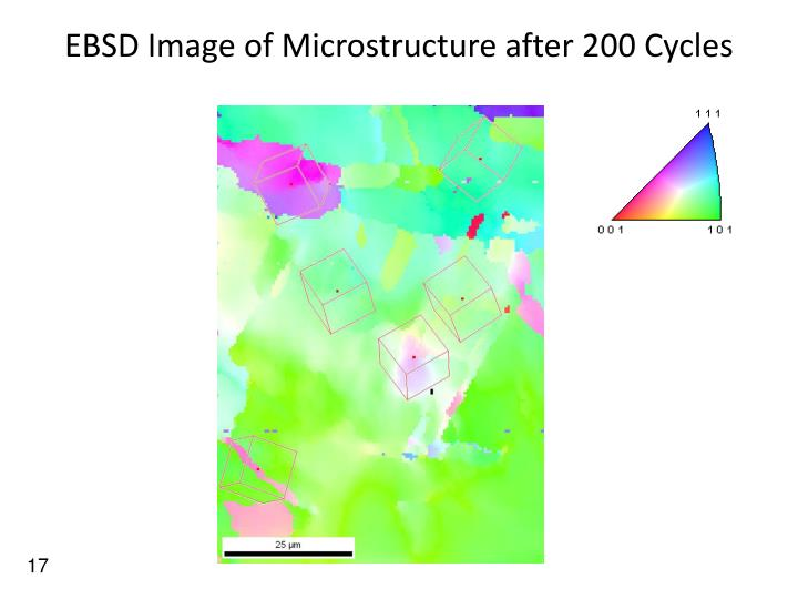 EBSD Image of Microstructure after 200 Cycles