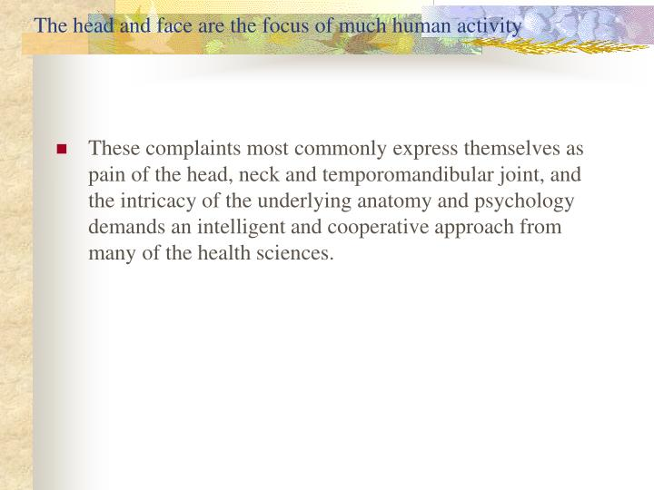 The head and face are the focus of much human activity
