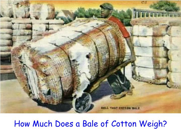 How Much Does a Bale of Cotton Weigh?