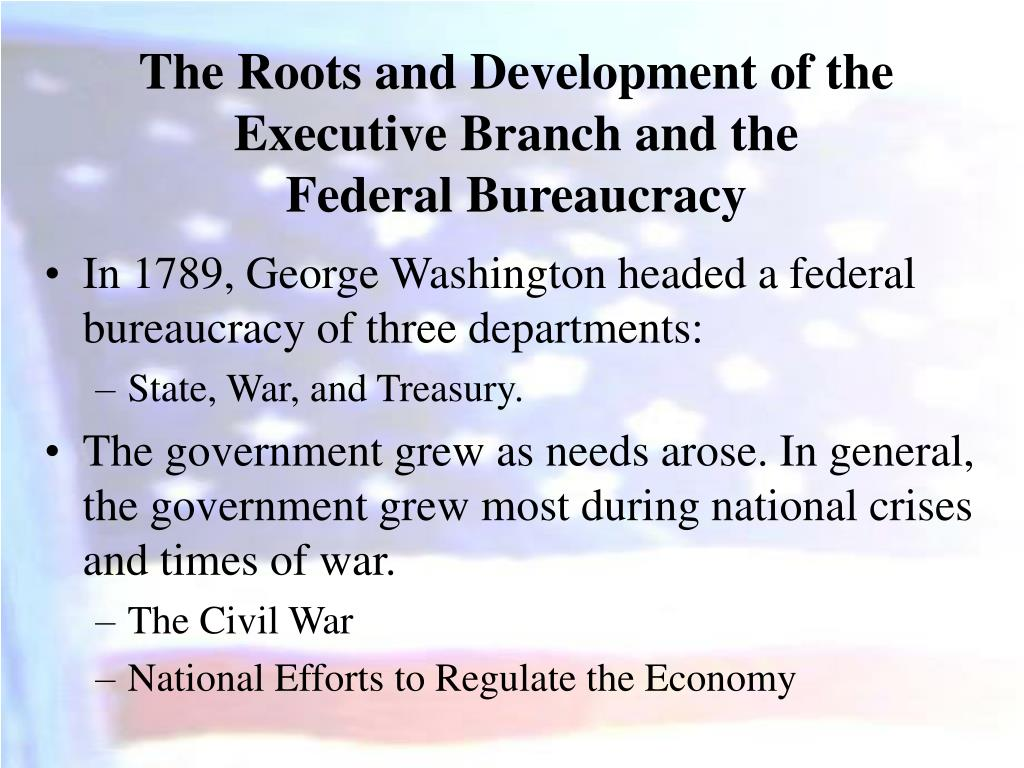 The Roots and Development of the Executive Branch and the