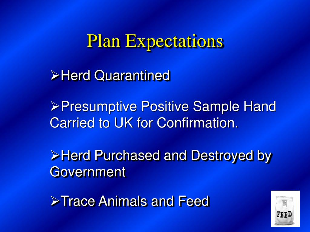 Plan Expectations