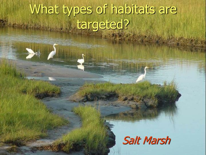 What types of habitats are targeted?