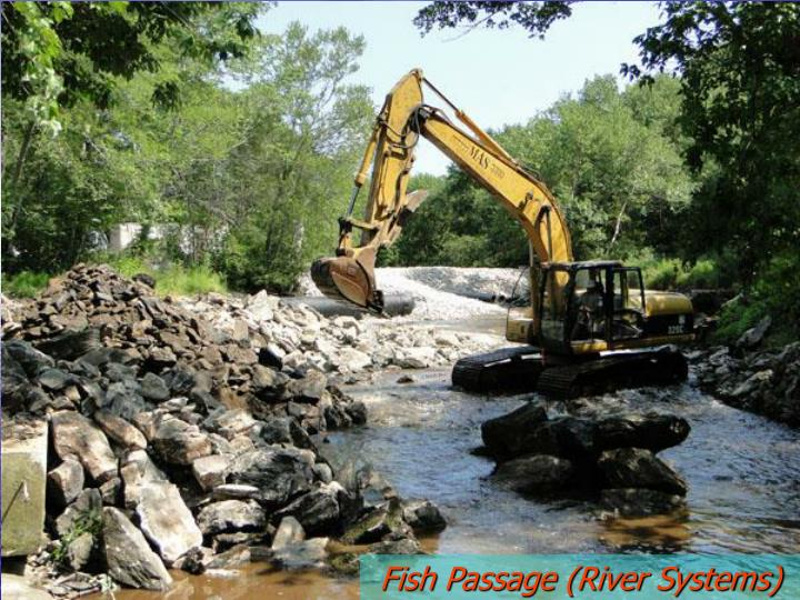 Fish Passage (River Systems)