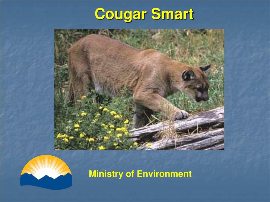 Cougar Smart