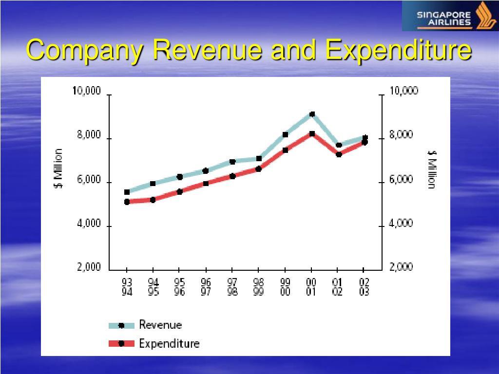 Company Revenue and Expenditure