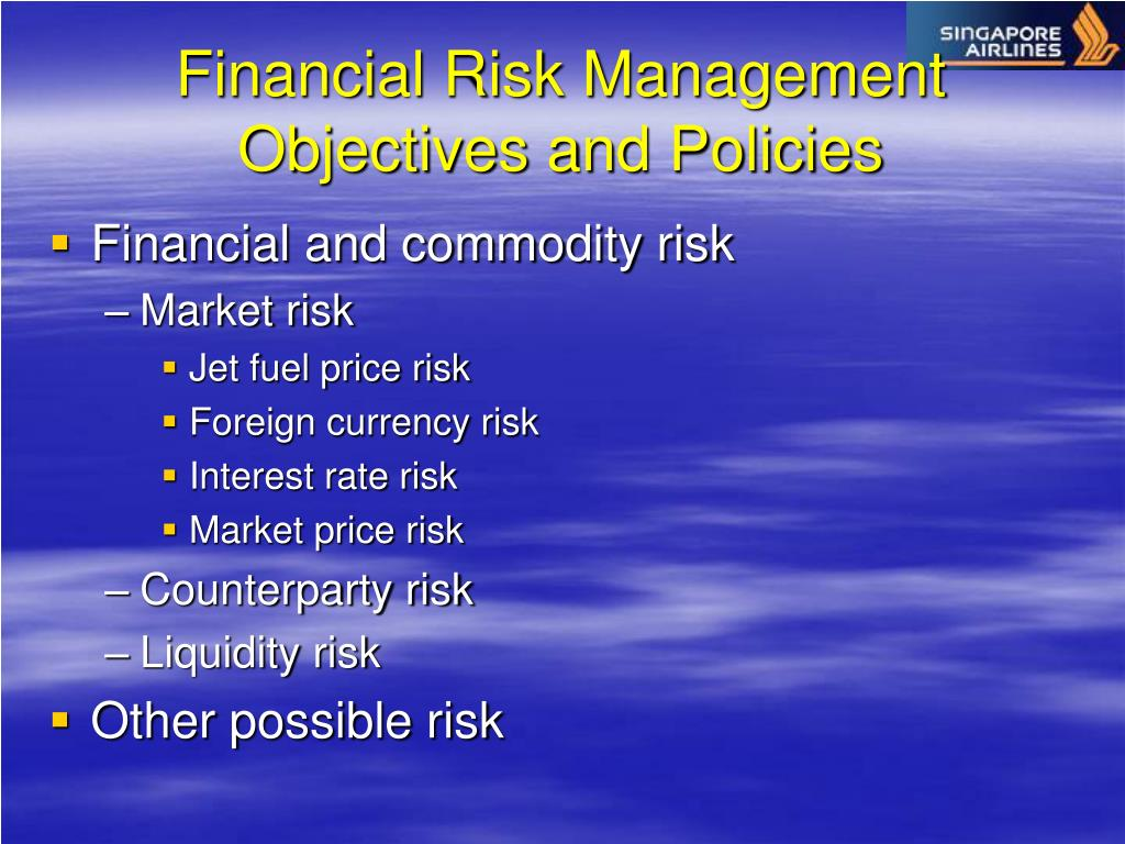 Financial Risk Management Objectives and Policies