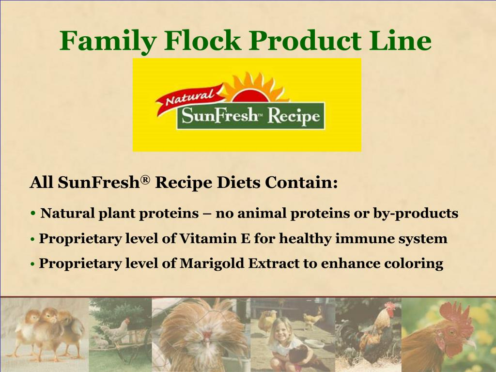 Family Flock Product Line