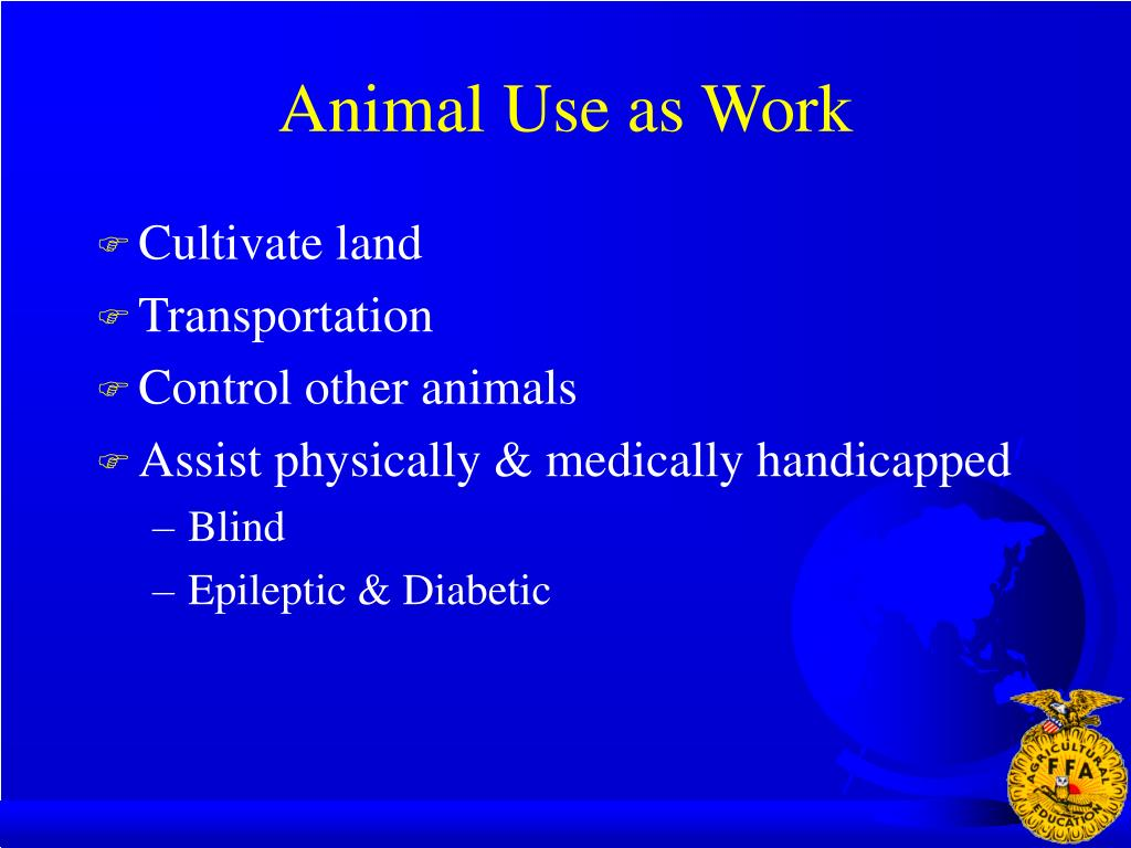 Animal Use as Work