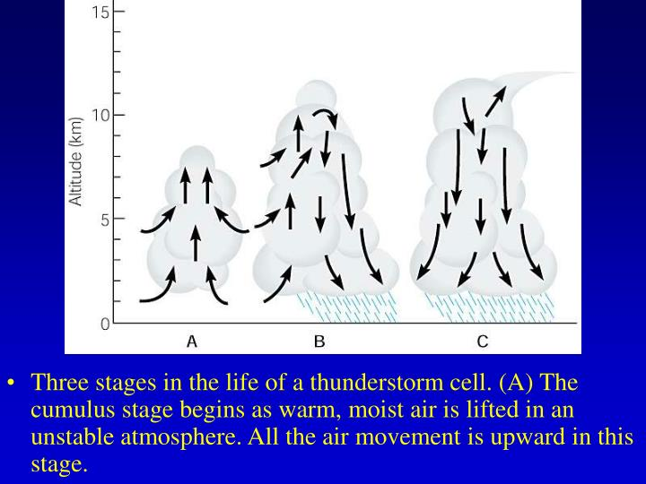 Three stages in the life of a thunderstorm cell. (A) The cumulus stage begins as warm, moist air is lifted in an unstable atmosphere. All the air movement is upward in this stage.
