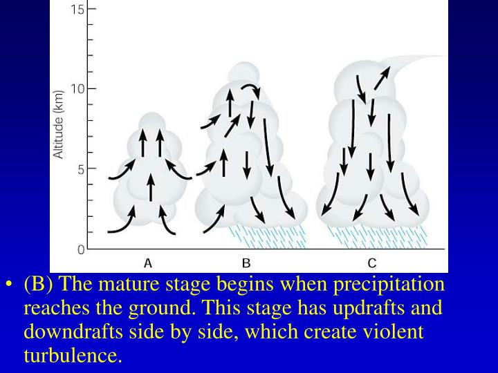 (B) The mature stage begins when precipitation reaches the ground. This stage has updrafts and downdrafts side by side, which create violent turbulence.