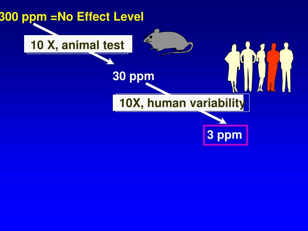 10 X, animal test