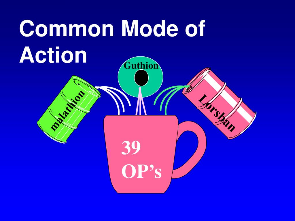 Common Mode of Action