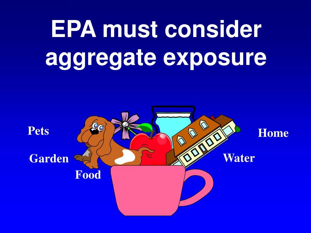 EPA must consider