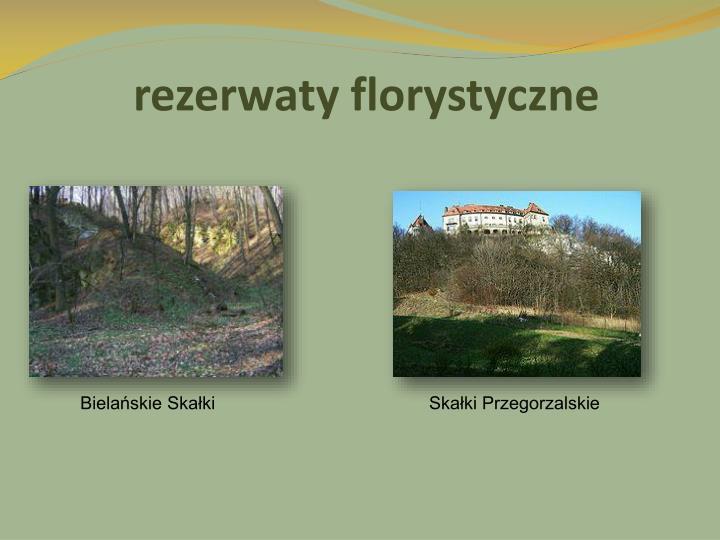 rezerwaty florystyczne