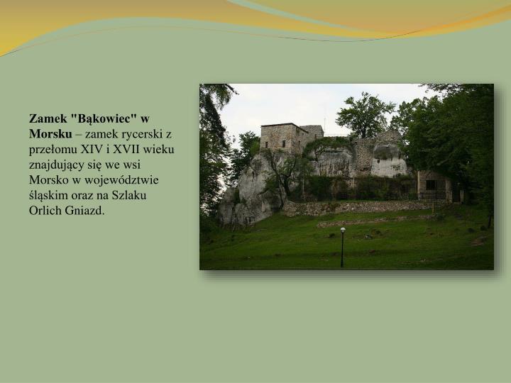 """Zamek """"Bąkowiec"""" w Morsku"""