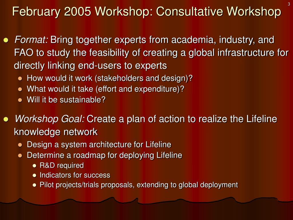 February 2005 Workshop: Consultative Workshop