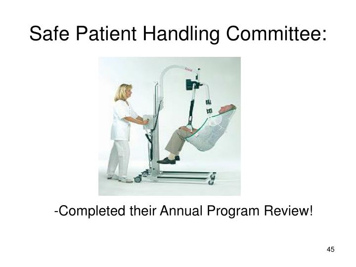 Safe Patient Handling Committee: