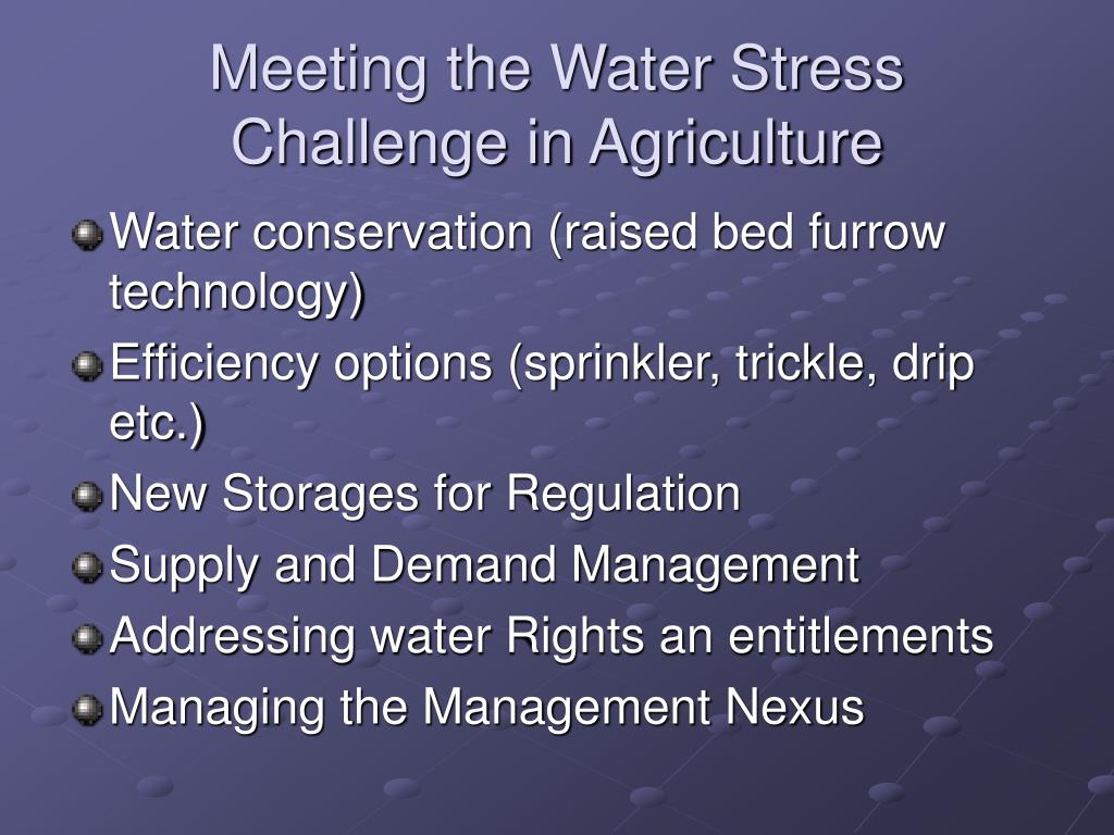 Meeting the Water Stress Challenge in Agriculture