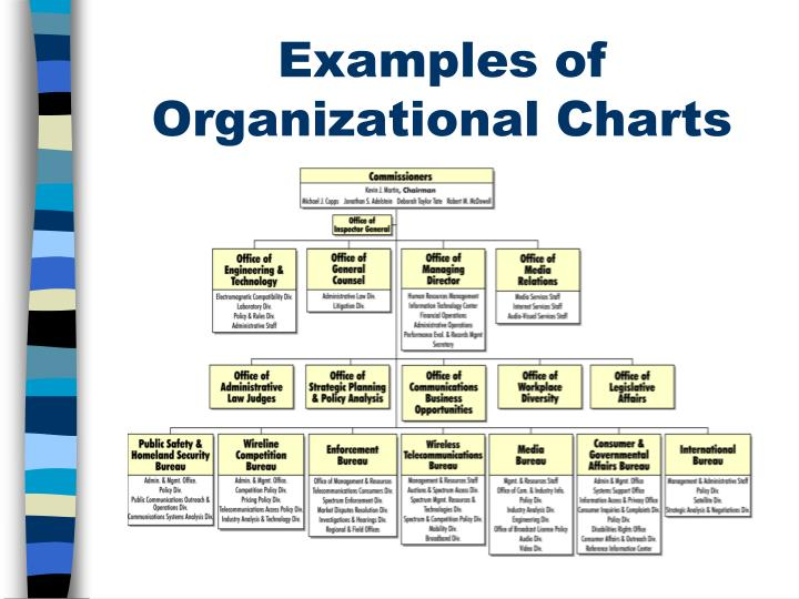Examples of Organizational Charts