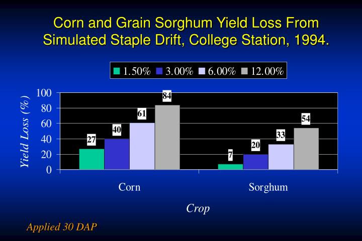 Corn and Grain Sorghum Yield Loss From Simulated Staple Drift, College Station, 1994.