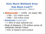 how much wetland area has been lost since pre settlement 1600 s