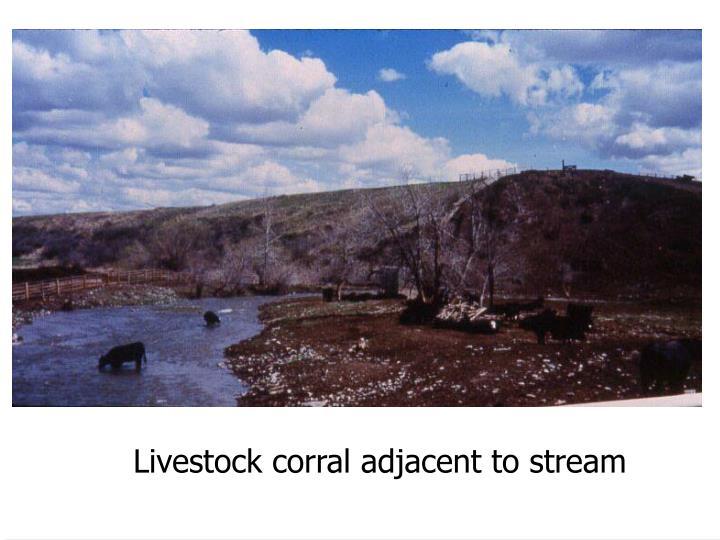 Livestock corral adjacent to stream