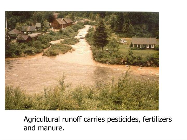 Agricultural runoff carries pesticides, fertilizers